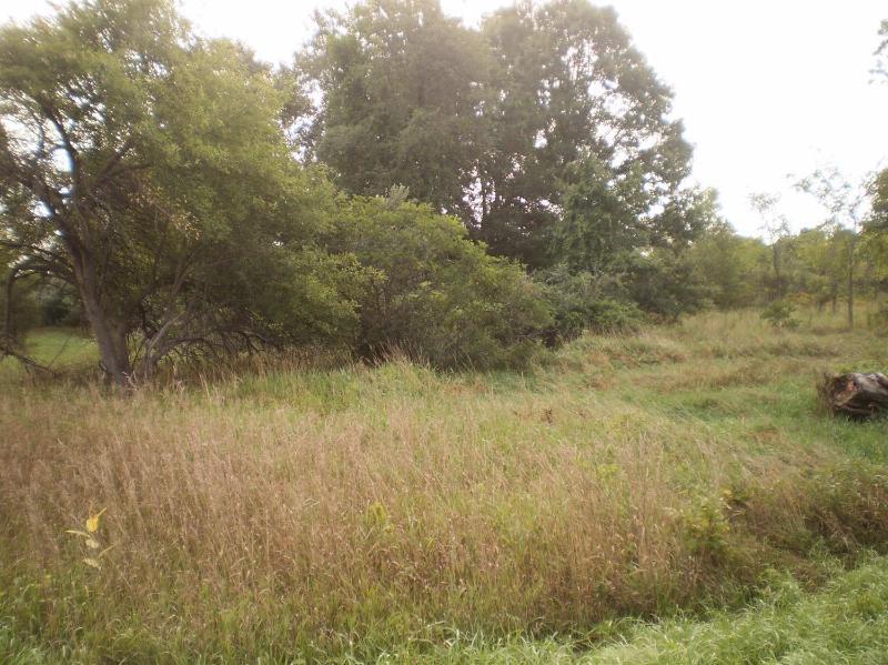 0 Struthers Road Grass Lake, MI 49240 by Keller Williams Ann Arbor $66,000