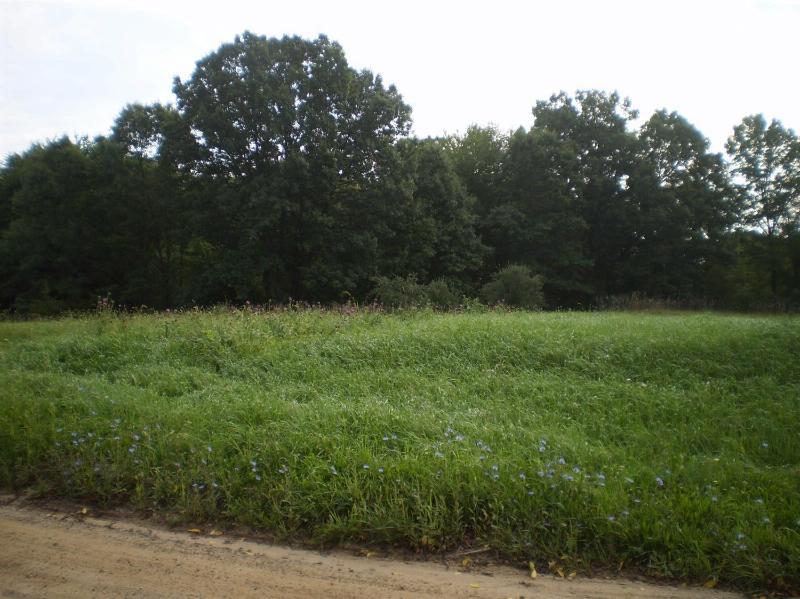 0 Struthers Road,  Grass Lake, MI 49240 by Keller Williams Ann Arbor $63,000