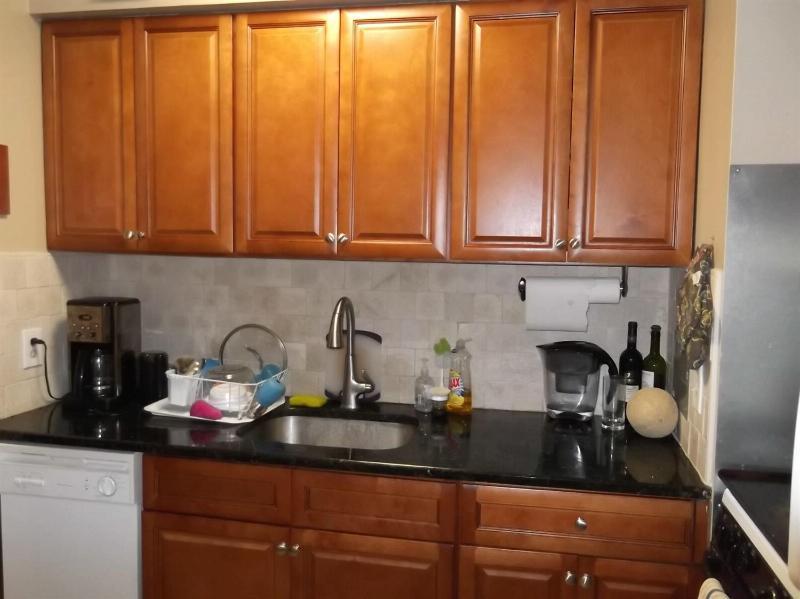 1233 Island Drive 101,  Ann Arbor, MI 48105 by Real Estate One $1,250