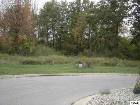 1001 SAW MILL CT Adrian, MI 49221 by The Wagley Group $30,000