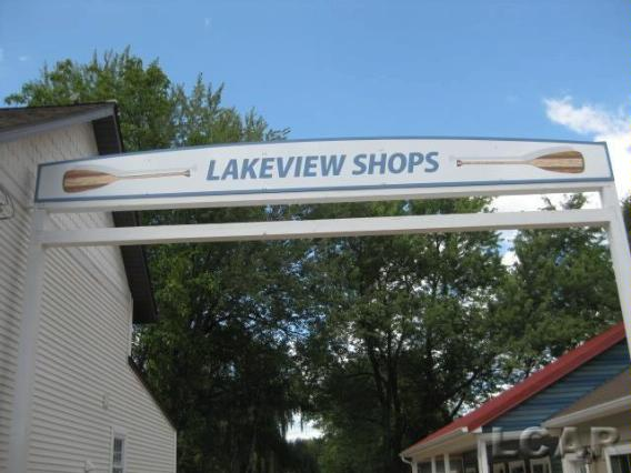 136 N Lakeview Boulevard Manitou Beach, MI 49253 by Howard Hanna Real Estate Services-Mb $833