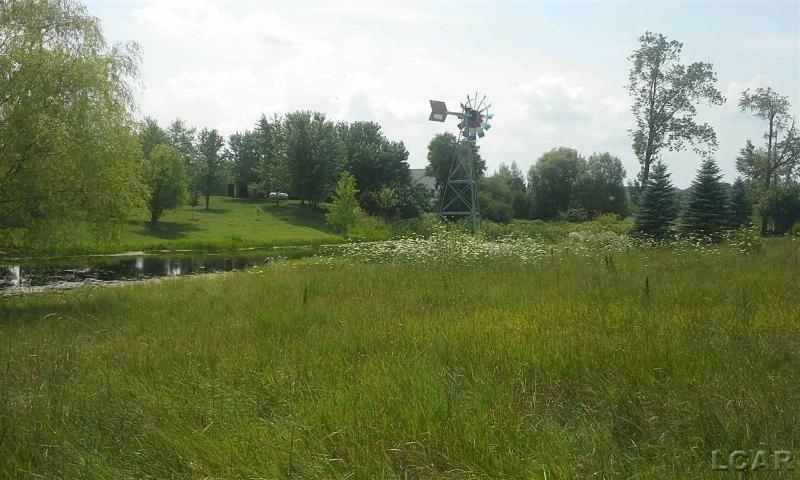 12000 Wisner Hwy Tipton, MI 49287 by The Wagley Group $29,900