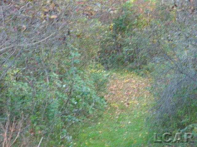 18000 N US-127 Block Cement City, MI 49233 by Remerica Somerset Realty $59,000
