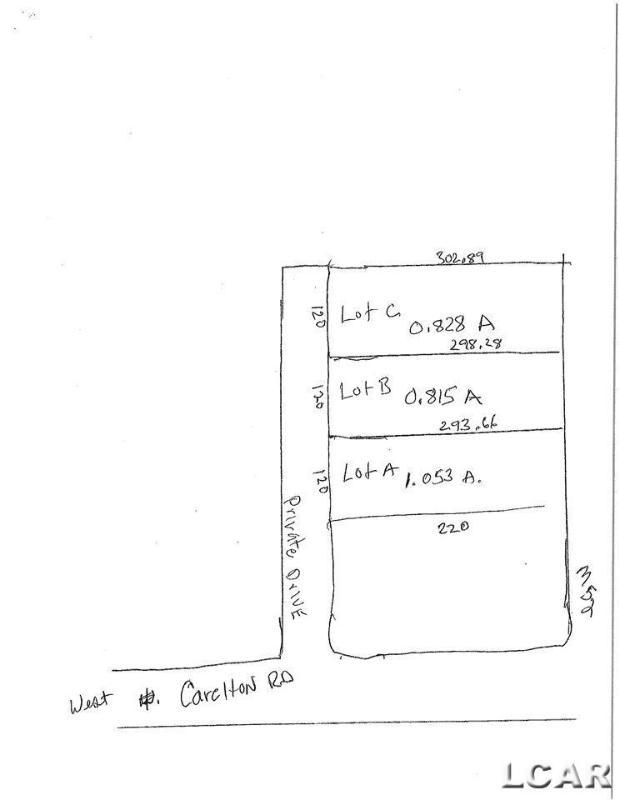 LOT B CARLETON RD Adrian, MI 49221 by Goedert Real Estate - Adr $42,000
