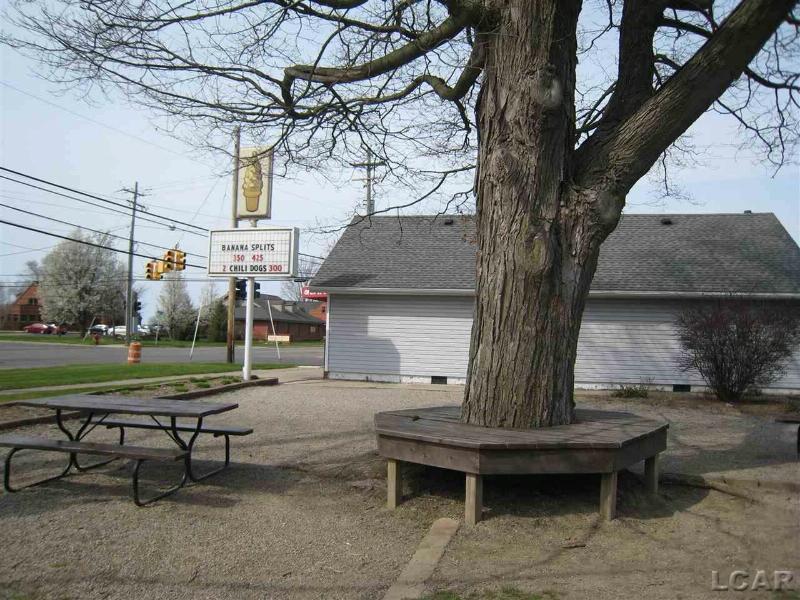 524 N Evans Tecumseh, MI 49286 by Howard Hanna Real Estate Services-Tecumseh $229,000