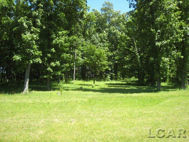 VL Samantha Drive Britton, MI 49229 by Howard Hanna Real Estate Services-Tecumseh $53,500