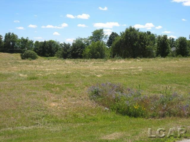 VL Arrow Lane Britton, MI 49229 by Howard Hanna Real Estate Services-Tecumseh $50,500