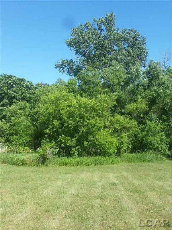 323 Woodside Drive Onsted, MI 49265 by Howard Hanna Real Estate Services-Adrian $17,900
