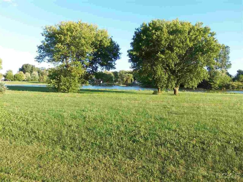 Castlebar LN BK Onsted, MI 49265 by Re/Max Main Street Realty $60,000