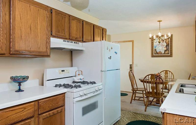 2062 E Carleton Rd Adrian, MI 49221 by Re/Max Main Street Realty $99,900