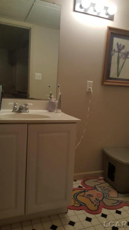 1401 Sauk Tecumseh, MI 49286 by Real Estate 4u $169,900
