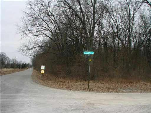 0 MEANWELL PARCEL E Dundee, MI 48131 by Coldwell Banker Haynes R.e. $39,900