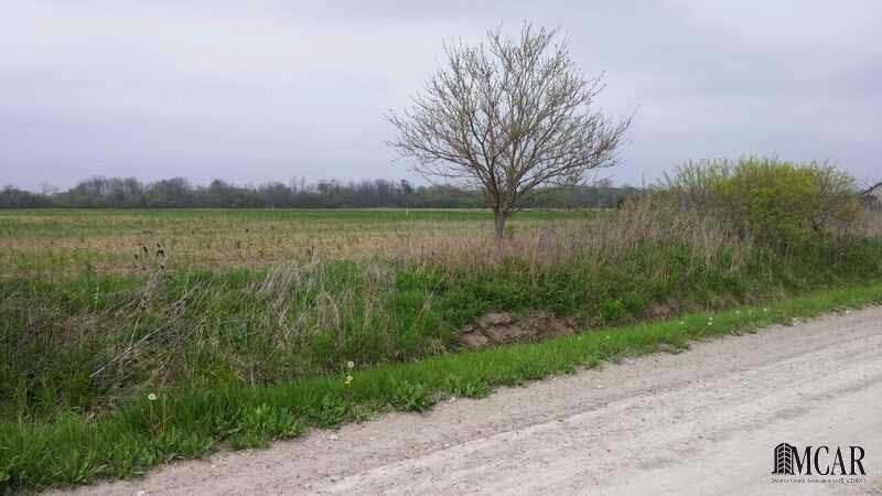 0 COLLINS RD Dundee, MI 48131 by Key Realty One $58,000