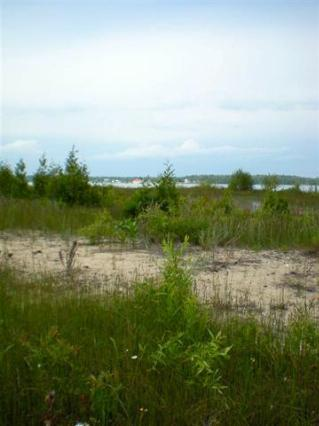 Carlisle Road,  Beaver Island, MI 49782 by Real Estate One $159,000