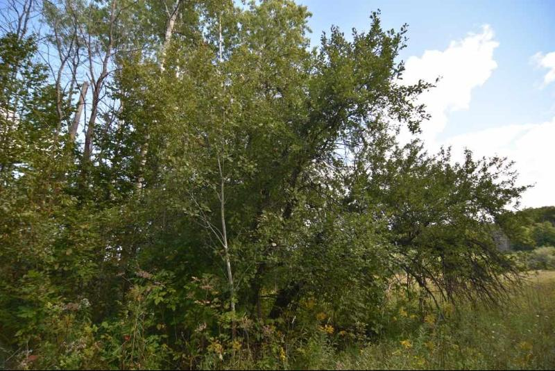 000 White Road,  Boyne City, MI 49712 by Berkshire Hathaway Homeservices Michigan Real Esta $2,300,000