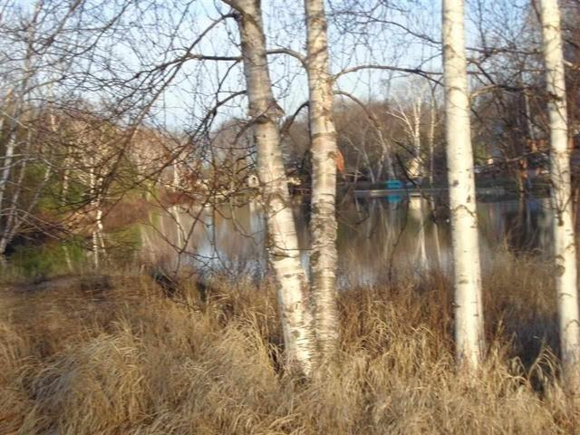 XXX No Wake lot 2,  Houghton Lake, MI 48629 by Homewaters, Llc Prudenville $49,900