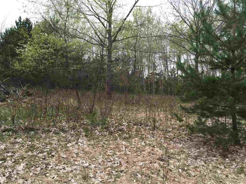 Brown Rd,  Manton, MI 49663 by Assist 2 Sell Buyers & Sellers Advantage $88,900