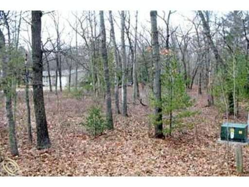 LOT 18 Acorn Drive Hume, MI 48467 by David L Kraft Realty Co, Llc $17,500