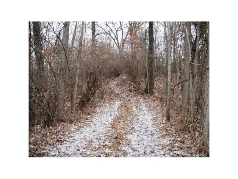 9775  Whitewood Rd,  Pinckney, MI 48169 by Charles Reinhart Co-Ann Arbor $650,000