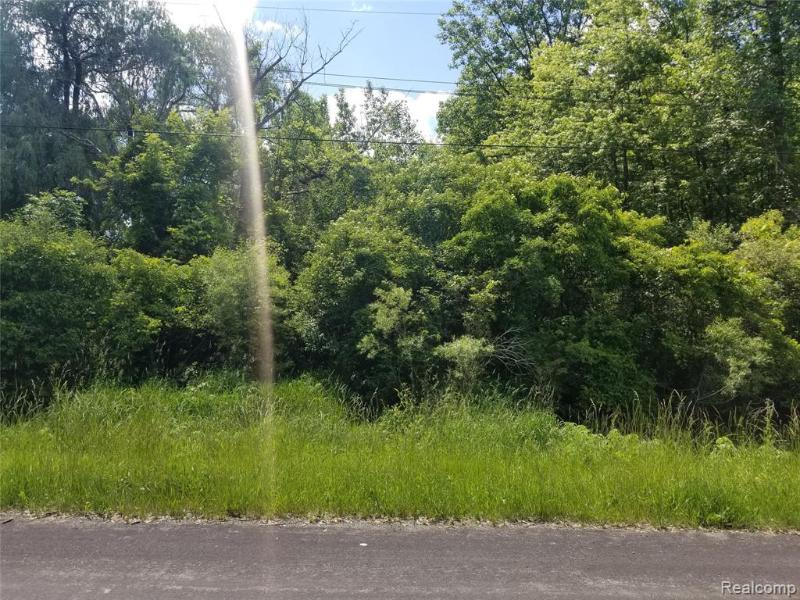 Vacant  Wahrman,  Romulus, MI 48174 by Van Esley Real Estate Inc $16,900