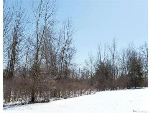 0 Dean Rd,  Howell, MI 48855 by Charles Reinhart Co-Ann Arbor $44,000