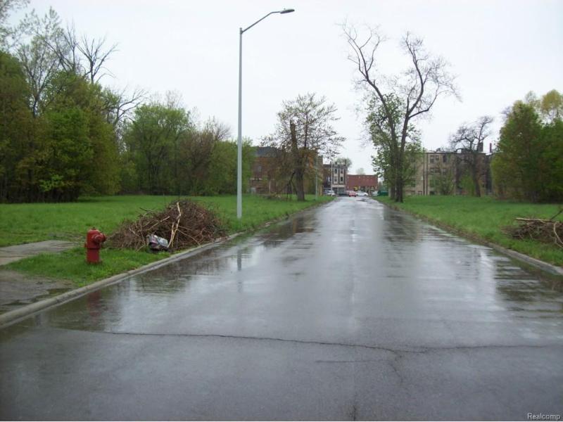 1115 Newport St,  Detroit, MI 48215 by Carter & Associates Realty $10,000