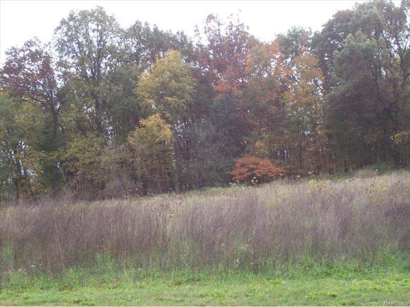 Unit 8 Iosco Ridge,  Gregory, MI 48137 by Kline Real Estate, Inc $19,900