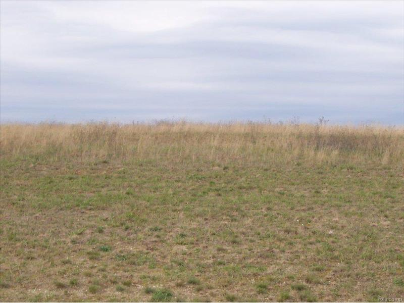 Unit33 Iosco Ridge,  Gregory, MI 48137 by Kline Real Estate, Inc $19,900