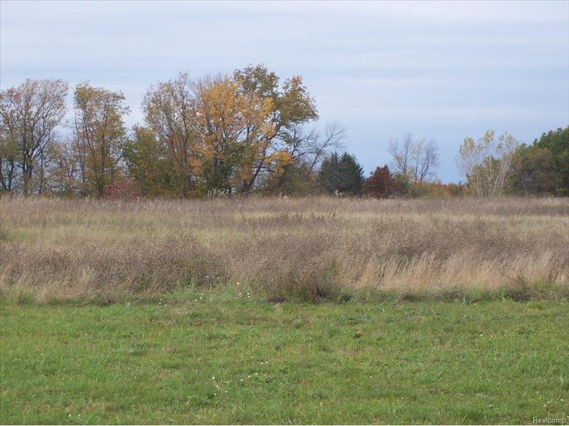 Unit35 Iosco Ridge,  Gregory, MI 48137 by Kline Real Estate, Inc $19,900
