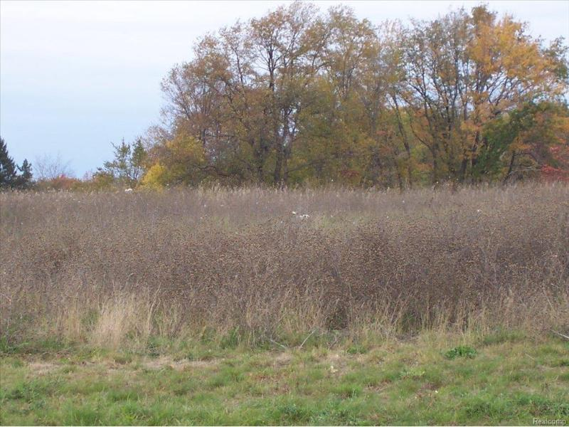 Unit38 Iosco Ridge,  Gregory, MI 48137 by Kline Real Estate, Inc $19,900