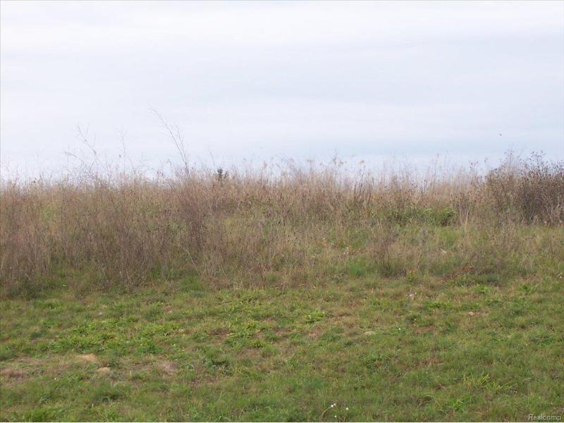 Unit43 Iosco Ridge,  Gregory, MI 48137 by Kline Real Estate, Inc $19,900