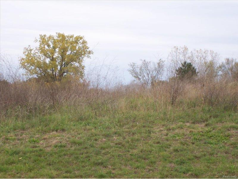 Unit45 Iosco Ridge,  Gregory, MI 48137 by Kline Real Estate, Inc $19,900