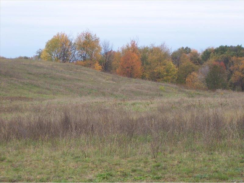 Unit46 Iosco Ridge,  Gregory, MI 48137 by Kline Real Estate, Inc $19,900