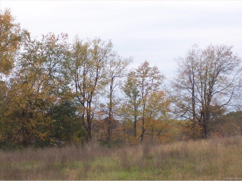 Unit48 Iosco Ridge,  Gregory, MI 48137 by Kline Real Estate, Inc $19,900
