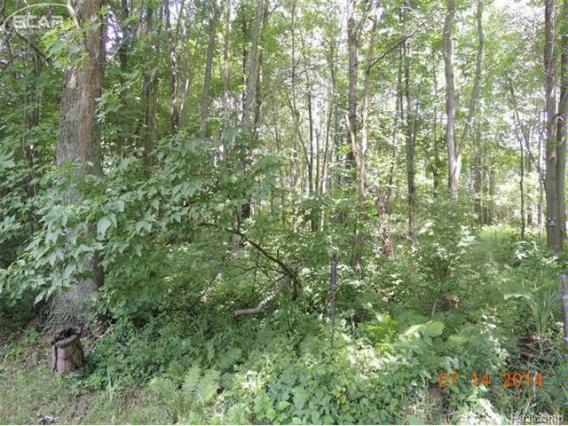 0  Pine Grove Cir,  Millington, MI 48746 by J. Mcleod Realty, Inc. $19,950