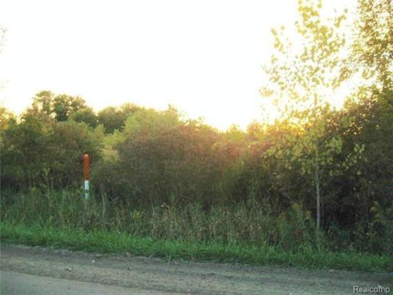 0  Nichols Rd,  Gaines, MI 48436 by James Realty $8,500