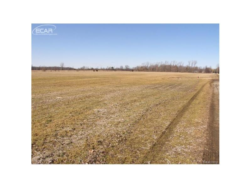 10000 Peet Road Chesaning, MI 48616 by Remax Tri County $64,000