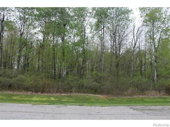 0  Birch Dr. Pinconning, MI 48650 by Remax Select $24,900