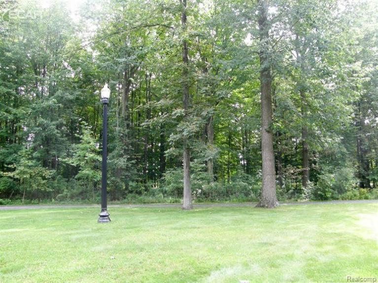 0 Tomahawk Chesaning, MI 48616 by Remax Tri County $27,900