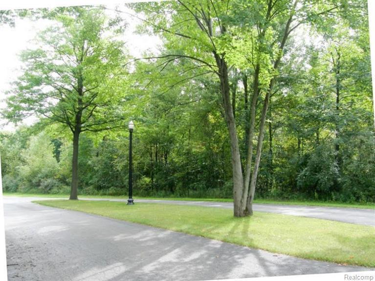 0  Arrowhead Drive 7-A,  Chesaning, MI 48616 by Remax Tri County $21,900