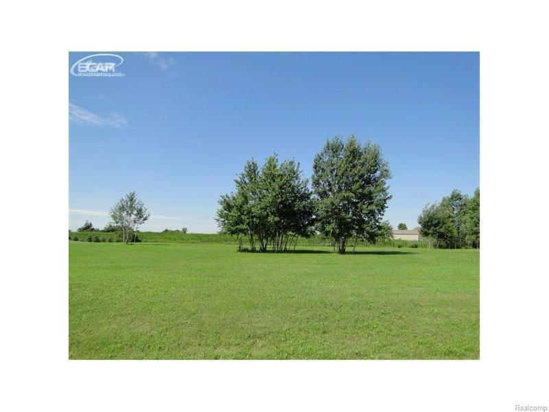 13034  White Oaks,  Gaines, MI 48436 by Remax Platinum Fenton $24,900