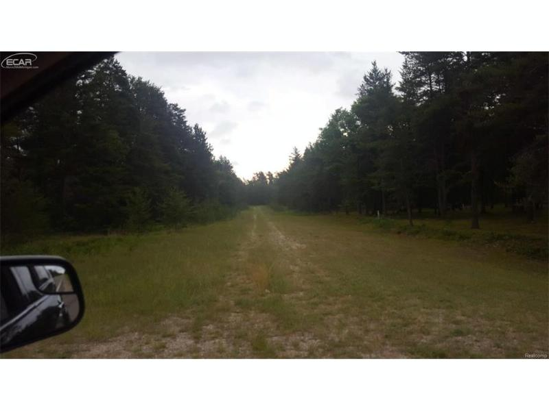 0  Airport Drive,  Roscommon, MI 48653 by Century 21 Woodland Realty $75,000