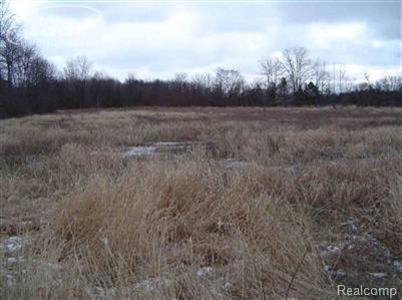0  Morrish Rd,  Swartz Creek, MI 48473 by Berkshire Hathaway Homeservices Michigan Real Esta $24,900