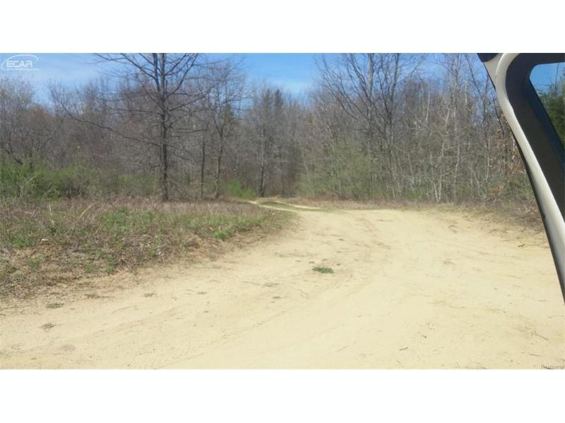0  Reese Rd.,  Millington, MI 48746 by Changingstreets.com $25,000