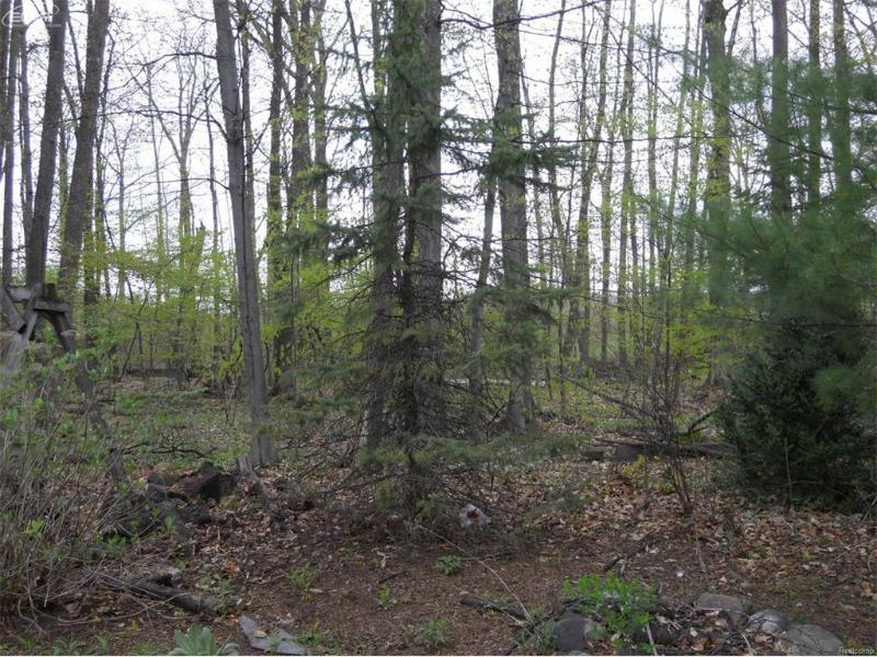 8788  Timber Trl,  Freeland, MI 48623 by Remax Prime Properties $290,000