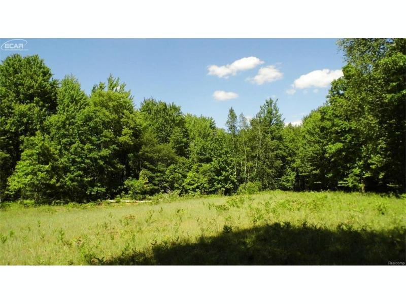 0 Brown Road Millington Township, MI 48746 by J. Mcleod Realty, Inc. $69,900