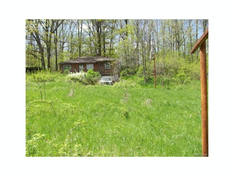 2571  Goodrich Rd,  Otter Lake, MI 48464 by Century 21 Metro Brokers $68,500