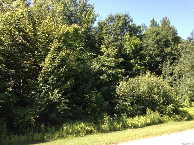 0  Downing,  Birch Run, MI 48415 by Bomic Real Estate $59,900