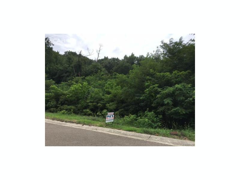 16363  Catalpa Ridge Dr.,  Holly, MI 48442 by Inca Realty Llc $74,900