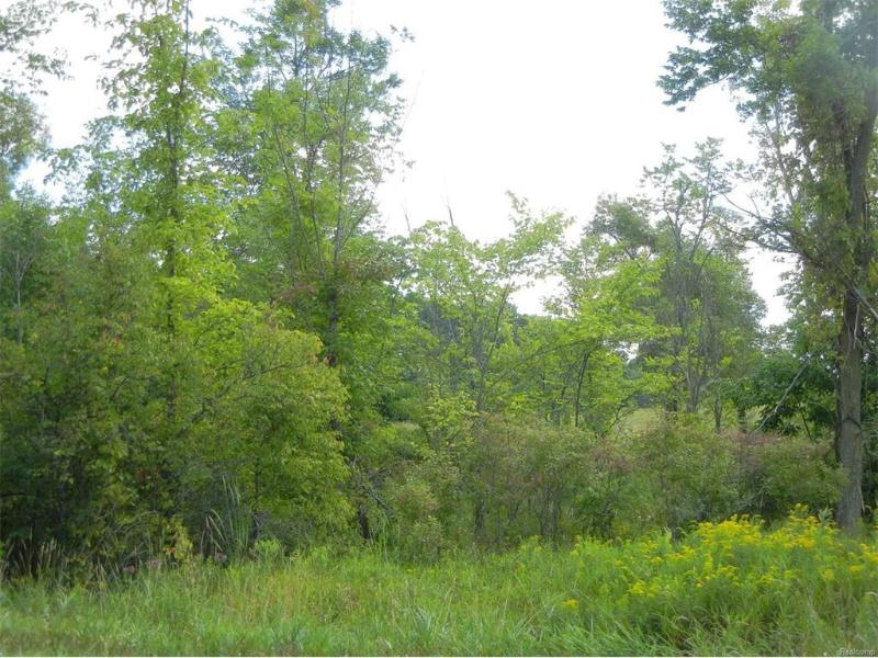 0  Brewer Rd,  Owosso, MI 48867 by Century 21 Looking Glass $39,900